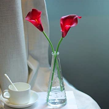 Amazon Silk Flower Dried Flower Plastic Flowers Emulation