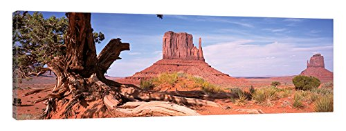 iCanvasART West and East Buttes (The Mittens) with A Gnarled Tree Trunk in The Foreground, Monument Valley, Navajo Nation, USA Canvas Print 36