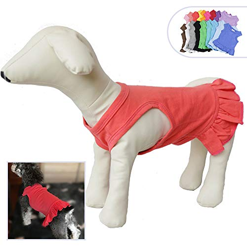 Pet Clothes Small Dog Clothing Blank Color Sport