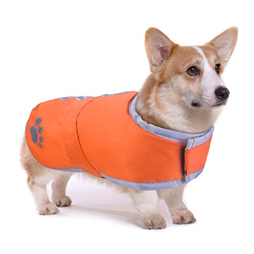 PETBABA Dog Winter Jacket, Fleece Puffer Coat Warm Pet, Waterproof Reversible Parka Apparel Suitable Snow Cold Weather Christmas Holiday, Reflective Vest Safe at Night Walk - M in Orange