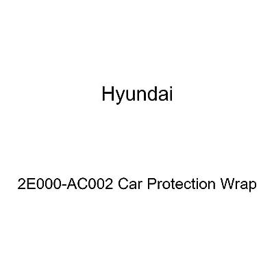 HYUNDAI Genuine 2E000-AC002 Car Protection Wrap: Automotive