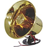 xxx ntx5000 Xxx Ntx5000 Exterior Pa Trumpet Horn With Polished Bross Finish