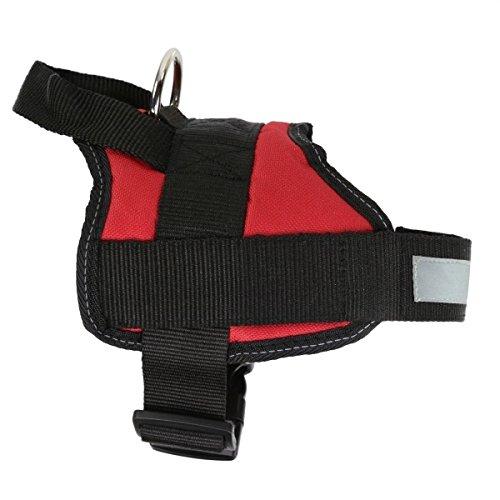 Regatta Reflective Adjustable Comfort Dog Walking Harness, Red from Regatta