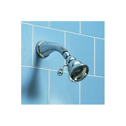 American Standard 8888.079.008 Enfield Adjustable Showerhead Only in Polished Nickel Finish ()