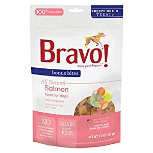 Bravo! Bonus Bites All Natural Freeze Dried Salmon Dog Treats - Grain & Gluten Free - 2 Ounce Bags 19