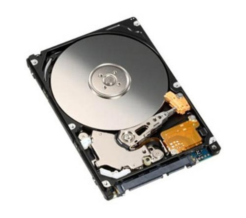 500 Gb Laptop Drive - Generic 500 GB 500GB 2.5 Inch Sata Laptop Internal Hard drive 5400 RPM For Laptop/Mac/PS3 (500 GB)
