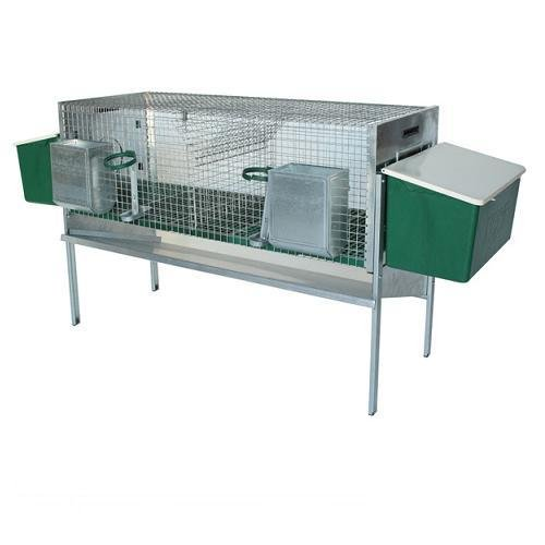 Rabbit Hutch Lasts with Two Nesting Plastic from cm. 127 x 51 x 41