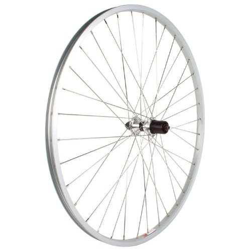 Sta-Tru Silver ST735 36H Rim Rear Wheel (700X35) by Sta Tru