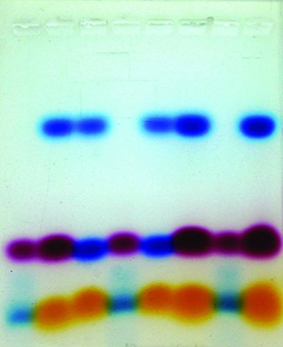 Walter Modern Biology Experimental Kit: MBII24HS An Introduction to Electrophoresis Agarose Gel Electrophoresis Kit