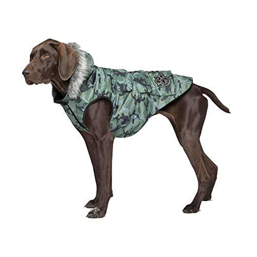 Canada Pooch Everest Explorer Dog Vest, Green Camo, Size 18