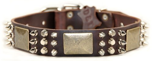 """Dean and Tyler """"CRAZY COMBO"""", Dog Collar with Brass Plate, Nickel Stud and Spike – Brown – Size 28-Inch by 1-1/2-Inch – Fits Neck 26-Inch to 30-Inch"""