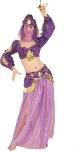 Forum Novelties Dance of the Seven Veils Belly Dancer Costume