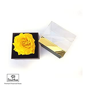 Eternal Rose/Preserved Rose/Long Lasting Rose XXL (4 inches) - Clear Acrylic Designer Giftbox - Yellow 45
