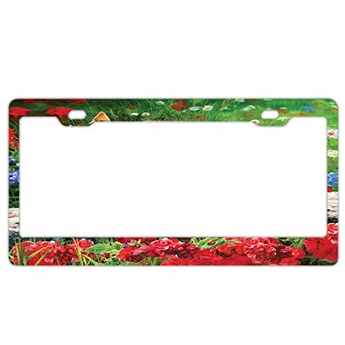 Custom Auto Frames Floral License Plate Frame Tag, 2 Holes Aluminum Metal Car Licence Plate Cover with Screw Caps for US Vehicles (Patriotic Birdhouse)