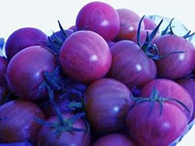 50 PCS Organic Purple Cherry Tomato Seeds Heirloom Fruit Vegetable Plants