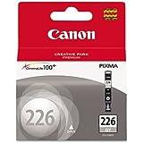 2 X Canon 4550B001AA 4550B001AA (CLI-226) Ink, Gray