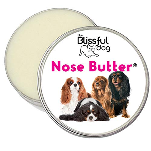 The Blissful Dog All Cavalier King Charles Spaniel Nose Butter – Dog Nose Butter, 8 Ounce