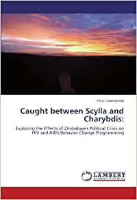 Caught between Scylla and Charybdis: Exploring the Effects