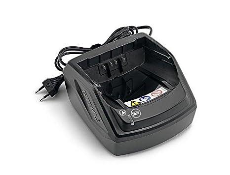 STIHL FSA 56 Segadora con batería: Amazon.es: Bricolaje y herramientas