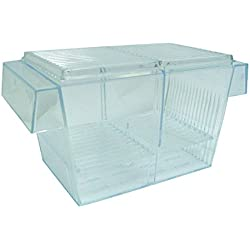 YML Fish Hatchery Tank, 8 by 4 by 4-Inch