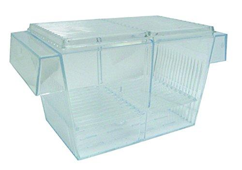 YML Fish Hatchery Tank, 8 by 4 by 4-Inch by YML