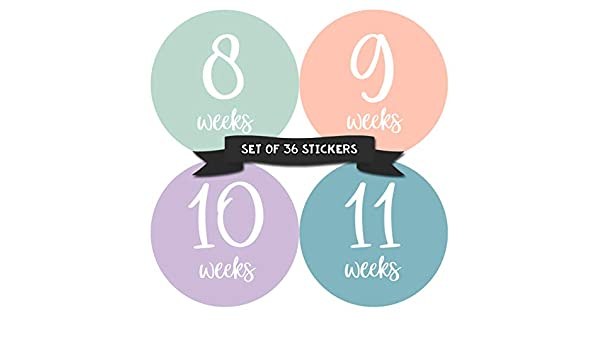 Amazon com : Months In Motion Pregnancy Weekly Belly Growth Stickers