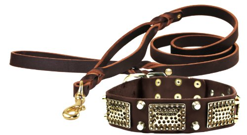 Dean and Tyler Bundle One Thor Collar 34-Inch by 1-1/2-Inch with One Matching Braidy Bunch Leash, 5-Feet Solid Brass…