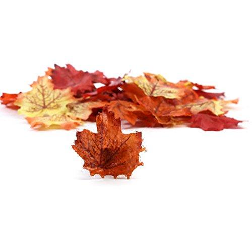 Detailed Leaf - 4