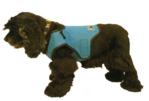 Cool Vest for Dogs, Blue, Large by Gramercy