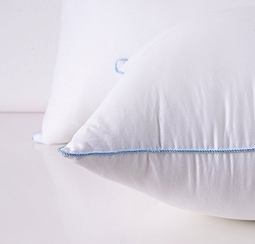 HOMESJUN Set Two, Fluffy Down Alternative Bed Pillow Hypo-Allergenic 100% Cotton, White, 20x28