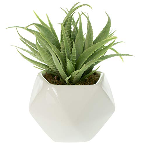 Small Faux Aloe Succulent in White Geometric Ceramic Planter - 4.5 x 6.5 Inches - Marmeda Decor Potted Artificial Plant in Glazed Vase - Modern Decor for Home or Office