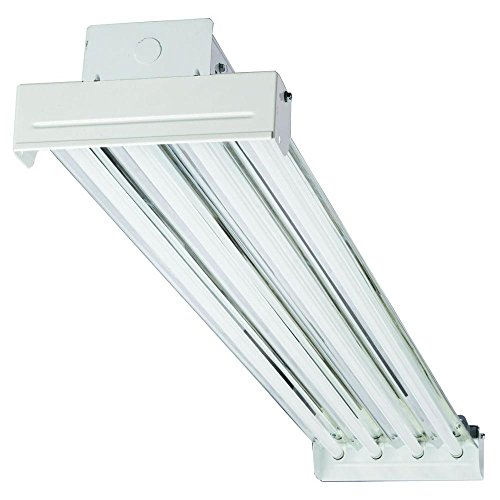 Lithonia Lighting IBC454V T5 High Output Fluorescent Bay 4-Light Fixture, White T5 High Bay