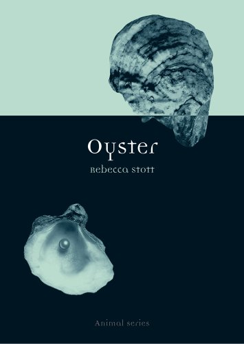 Oyster (Animal Series)