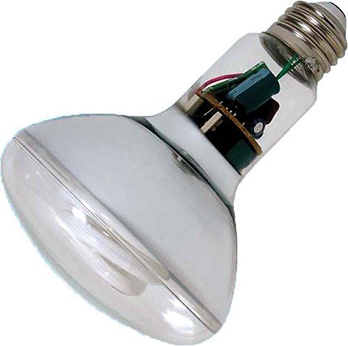 Cfl Flood Light Instant On in US - 2