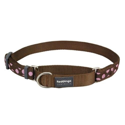 Red Dingo Pink Spots Brown Large Martingale Collar
