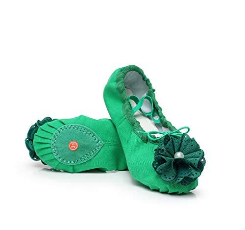 Xuanbao Zapato de Baile Profesional Ballet Zapato Pink Polet Shoes de Muchos Colores (Color : Verde, tamaño : 26)