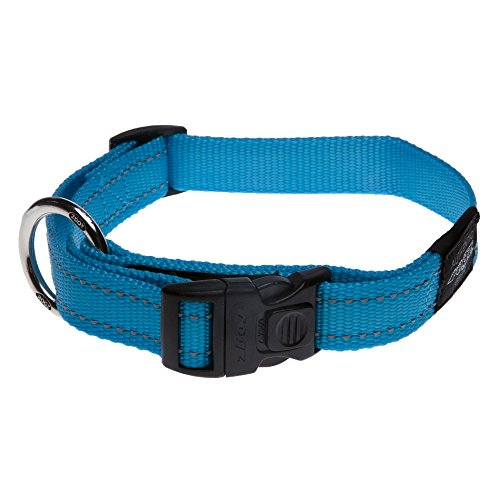 ROGZ Reflective Dog Collar for Large Dogs, Adjustable from 13-22 inches, Turquoise