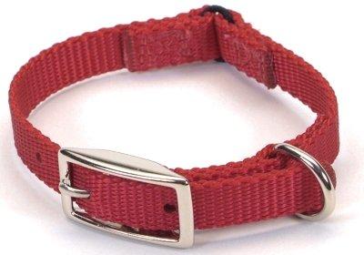 (Coastal Pet Sassy Nylon Cat Safety Collar (Red, 10 Inch L x 3/8 Inch W))