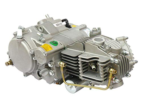 YX 150CC OIL COOLED ENGINE MOTOR Electric + Kick Start 4 speed clutch 4 up OGM GPX Pit Bike ()