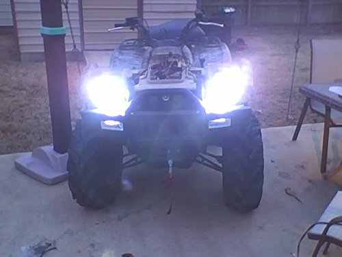 BlingLights Powersports H6M 4150K Hyper Plasma Xenon Halogen Light Bulbs Pair by BlingLights (Image #3)