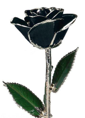 Black Laquered Platinum Dipped Long Stem Genuine Rose In Gift Box