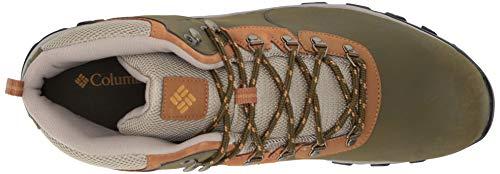 Columbia Men's Newton Ridge Plus II Waterproof Ankle Boot Silver sage, Dark Banana 7 Regular US by Columbia (Image #7)
