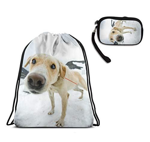 Justice Mesh Gloves - Mens Women School Travel Drawstring Bag, Alaska Dog Staring At You Cinch Sackpack, Waterproof, Home Travel Storage Use + Large Capacity Clutch Travel Purse With Handle