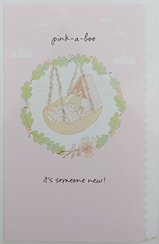 Congrats on Your New Baby Girl Greeting Card