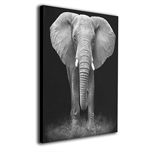 - Absonne Canvas Wall Art Black and White Glass Splashback Elephant Streched and Framed Paintings Picture for Home Decorations Wall Decor