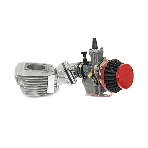 Dio Reed Valve Zeda Racing Cylinder and Carburetor Assembly - 66cc/80cc Gas Motorized Bike  ()