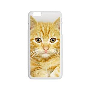 Textured Cat Hight Quality Plastic Case for Iphone 6