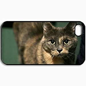 Personalized Protective Hardshell Back Hardcover For iPhone 4/4S, Cat Face Eyes Collar Design In Black Case Color