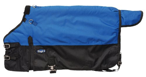 - Tough 1 Polar 600D Waterproof Poly Foal Blanket, Royal Blue, Medium