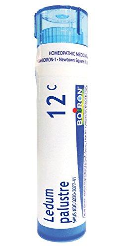 (Boiron Ledum Palustre 12C, 80 Pellets, Homeopathic Medicine for Insect Bites)
